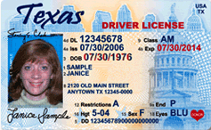 texas_drivers_licence_sample